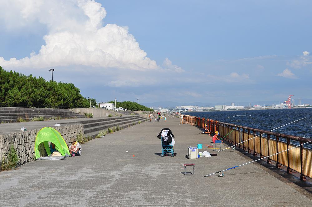 釣果 芦屋 浜