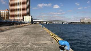 南芦屋浜-東001.jpg